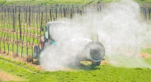 spraying apple orchard in spring