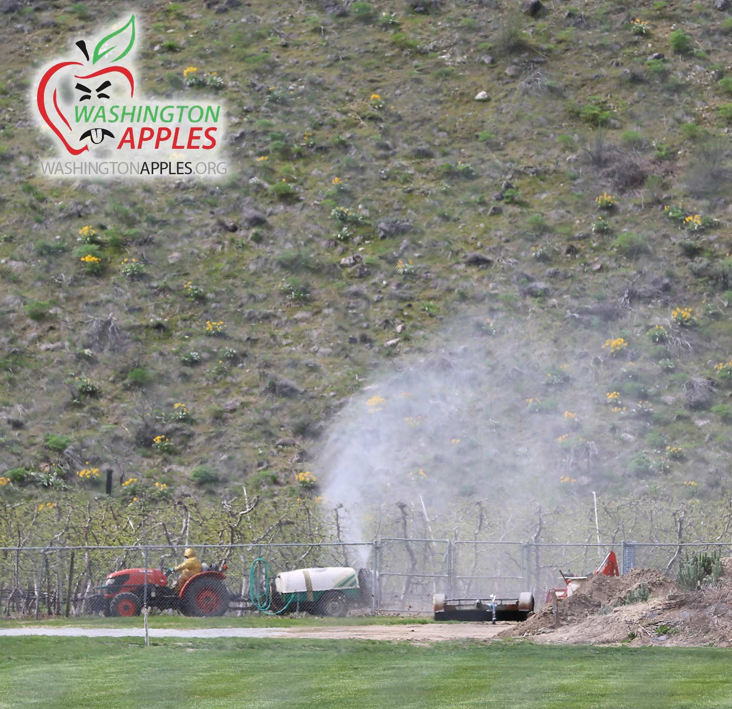 spraying_apples_pesticide_washington_apples